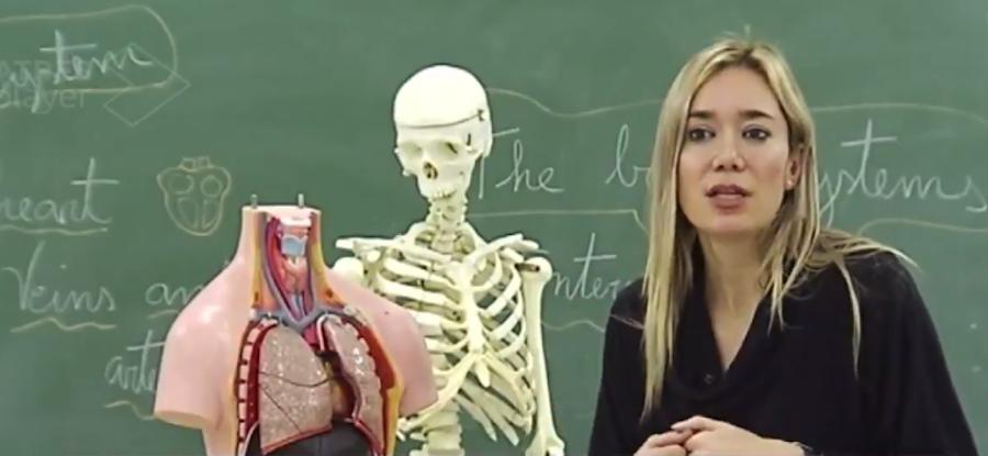 Учительница из Испании Вероника Дуке нашла креативный способ объяснить школьникам анатомию человека. Фото скриншот Twitter @silvinillaa.