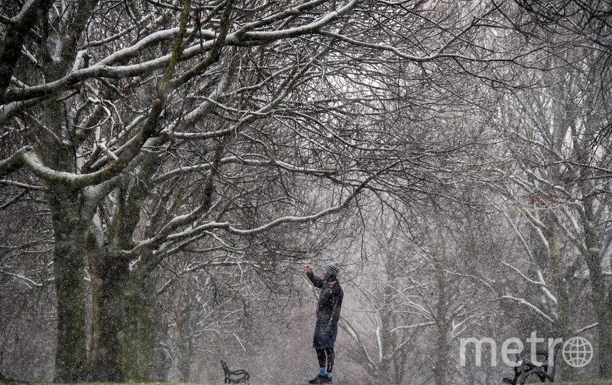 Снегопад пройдет в субботу, но к Новому году все снова может растаять. Фото Getty