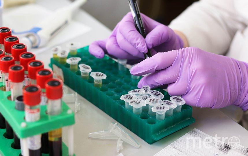2019 год отметился множеством исследований в сфере медицины. Фото pixabay.com
