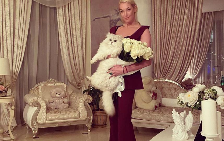 Волочкова дома с любимым котом. Фото instagram.com/volochkova_art