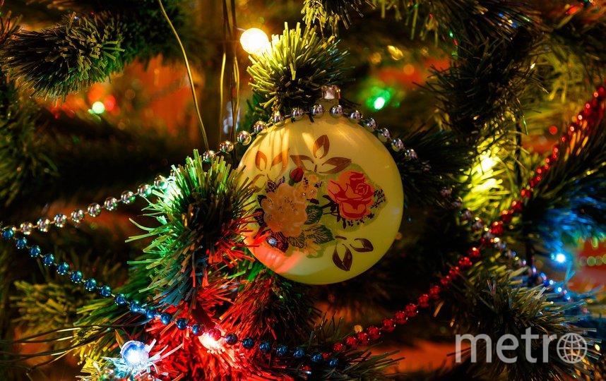 В Москве задержали приезжую женщину, продававшую несуществующие билеты на новогодние ёлки. Фото pixabay.com