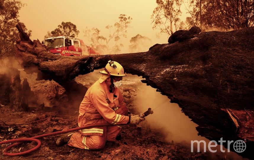 Пожары в Австралии. Фото, сделанные в период с конца декабря 2019 по 5 января 2020 года. Фото Getty