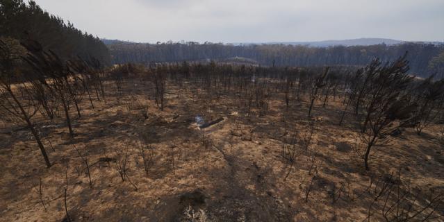 Пожары в Австралии. Фото, сделанные в период с конца декабря 2019 по 5 января 2020 года.