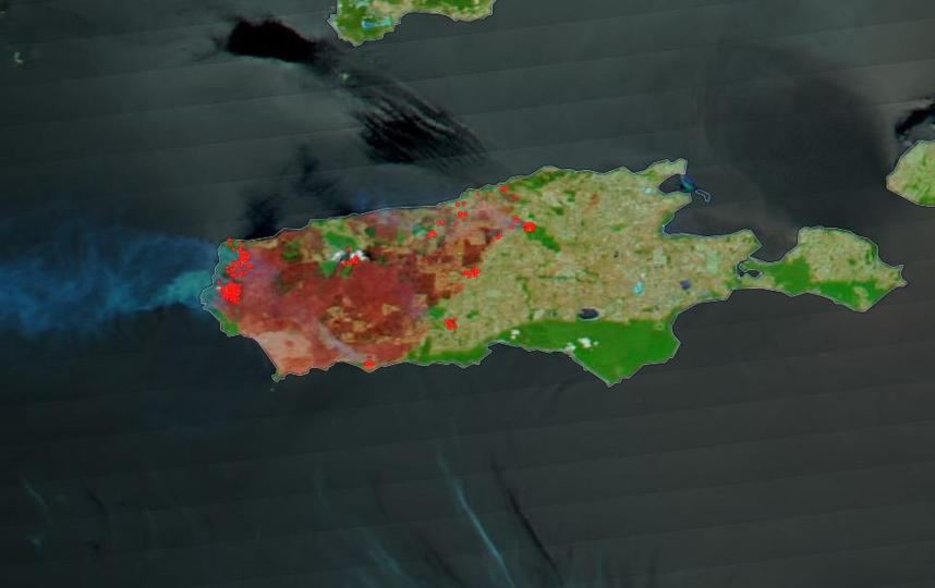 В результате лесных пожаров была сожжена одна треть территории острова Кенгуру. Фото NASA Worldview