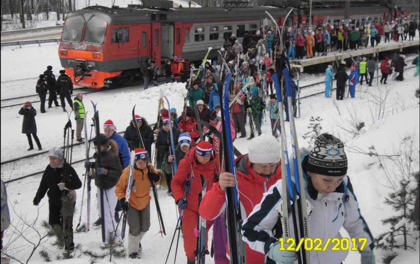 Лыжные стрелы в 2017-м году. Фото gov.spb.ru