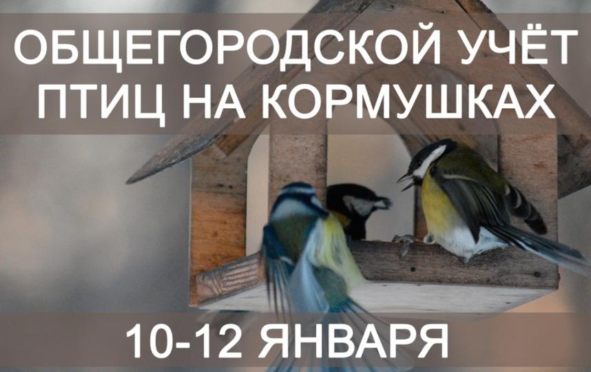 Фото: www.gov.spb.ru.