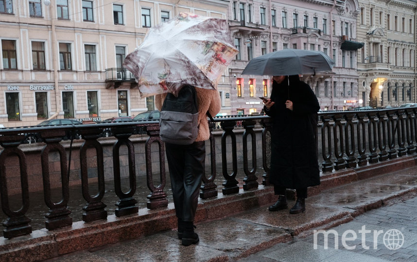 """Зима в Петербурге больше похожа на весну. Фото Святослав Акимов, """"Metro"""""""