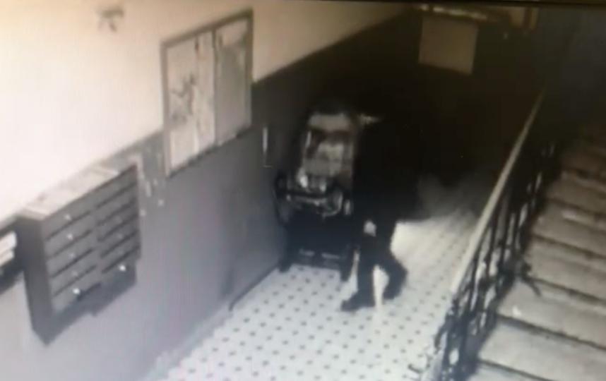 Скриншот видео МВД РФ по Санкт-Петербургу и Ленобласти.