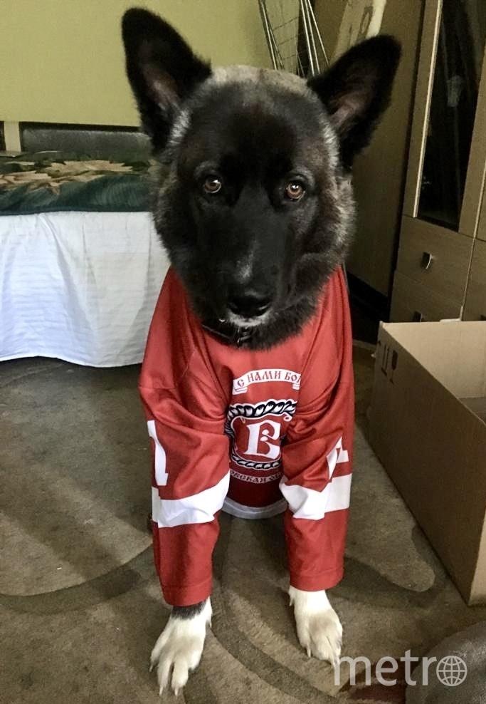 """Сеня – истинный фанат хоккея! Несмотря на погоду, он ещё надеется выйти на лёд! Фото Ксения Храмова, """"Metro"""""""