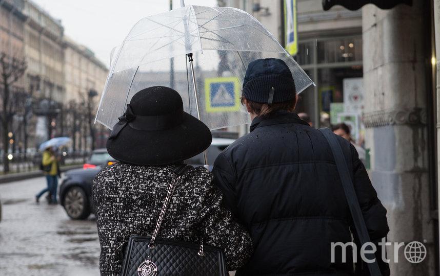 """В Петербурге дожди и посыпать дороги не требуется. Фото Святослав Акимов, """"Metro"""""""