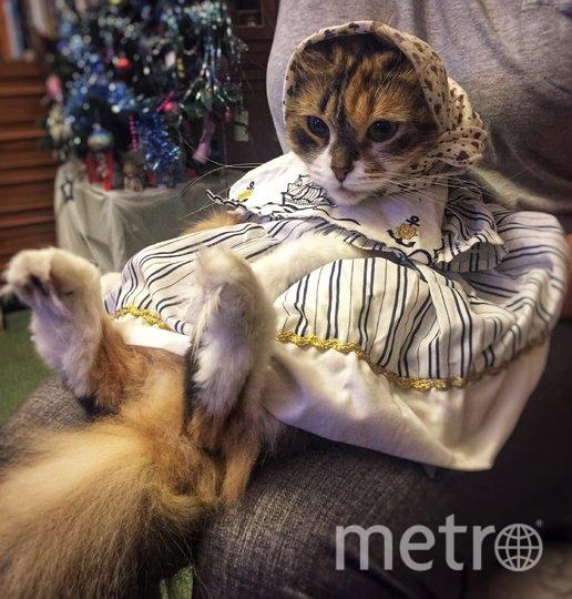 "Модница Буся. Фото Анна Гладышко , ""Metro"""