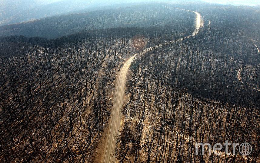 Австралию не перестают атаковать природные аномалии. Фото Getty