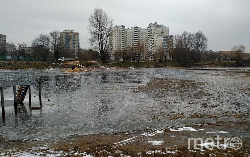 Бабаевский пруд сегодня больше напоминает пустырь. Фото Георгий Лепин