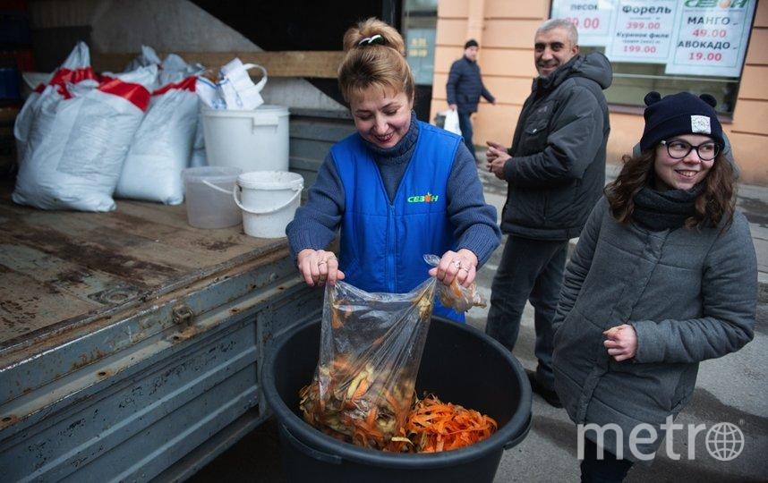 """Органику сдавали даже в промышленных масштабах – сотрудники ближайшего продуктового магазина. Фото Святослав Акимов, """"Metro"""""""