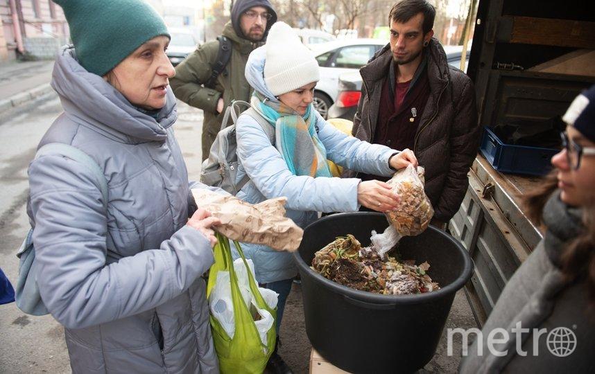 """Петербуржцы приносили на переработку червям бумагу, яичную скорлупу, органику и бумажные контейнеры. Фото Святослав Акимов, """"Metro"""""""