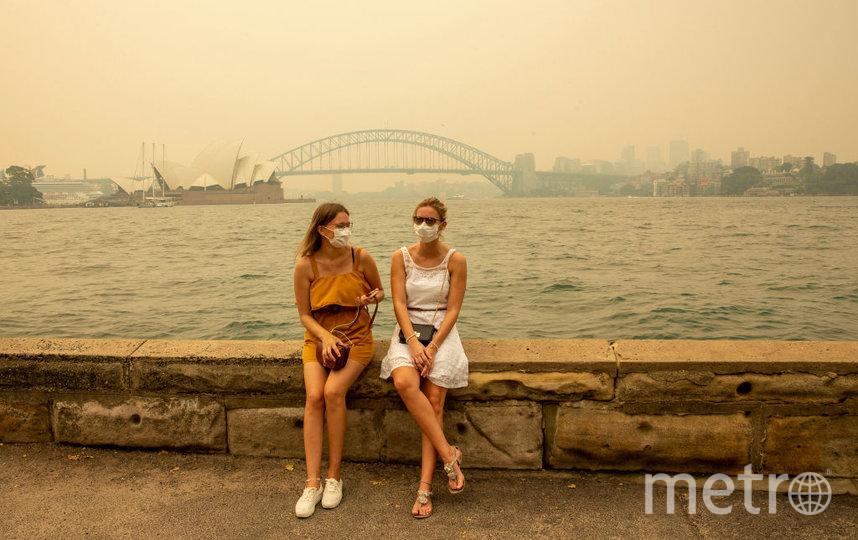 Череда разрушительных пожаров в Австралии унесла жизни нескольких десятков людей и миллиарда животных. Фото Getty