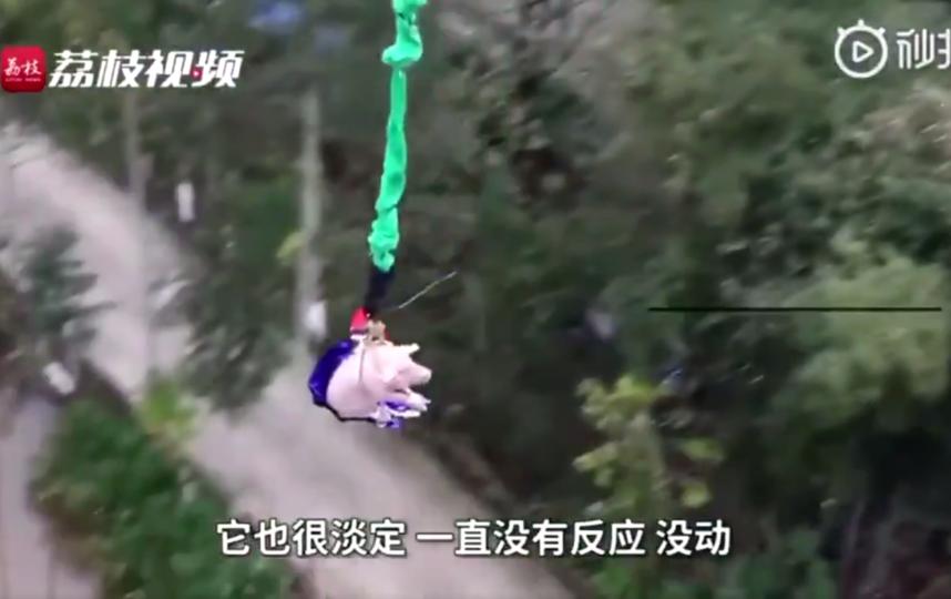 Так в парке города Чунцин отметили открытие нового аттракциона банджи-джампинга. Фото скриншот https://twitter.com/71Asy/