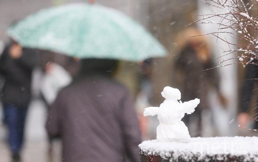 Сильный снегопад обрушится на Москву в среду. Фото Василий Кузьмичёнок