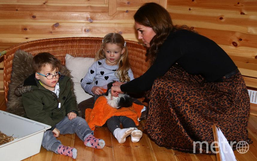 Кейт Миддлтон в Уэльсе в мини-хижине. Фото Getty