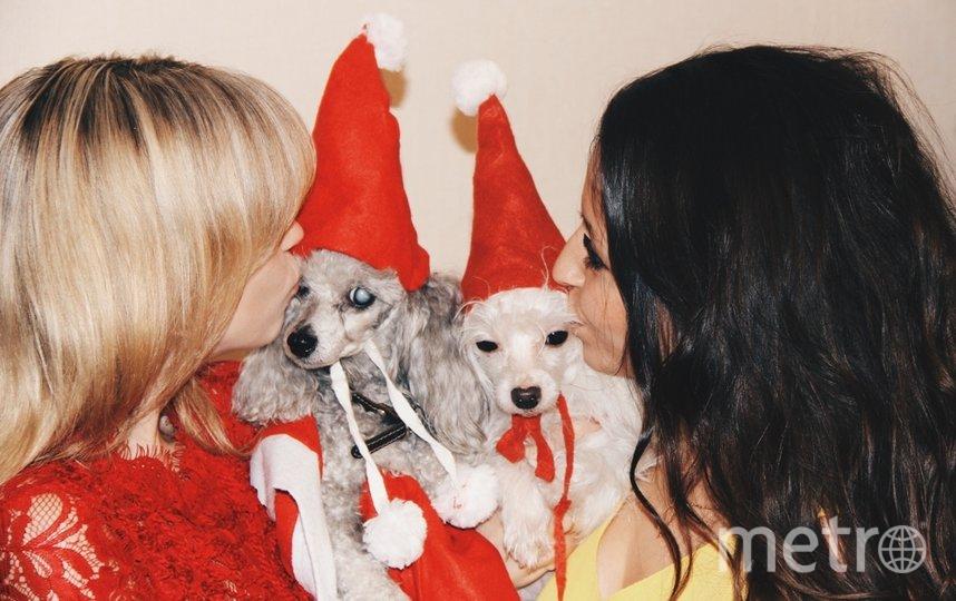 """Стефи и Тед встречают Новый год. Фото """"Metro"""""""