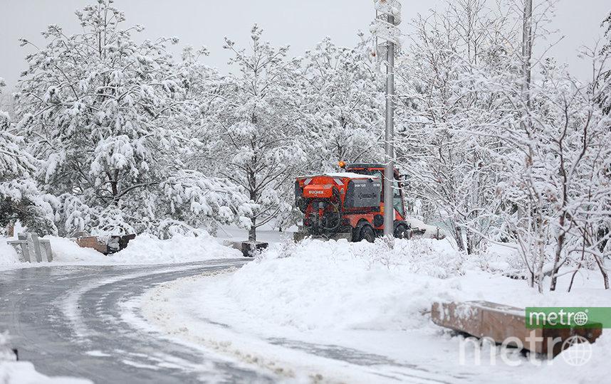 Сильный ветер и снег: Москвичей предупредили об ухудшении погоды. Фото Василий Кузьмичёнок