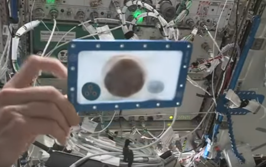 Астронавты Кристина Кох и Лука Пармитано впервые в истории приготовили шоколадные печенья в космосе. Фото скриншот https://www.youtube.com/watch?v=4ww-o8i-Ca0&feature=emb_title, Скриншот Youtube
