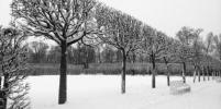 Зима в Петербурге задержится: синоптики обещают похолодание и снегопады
