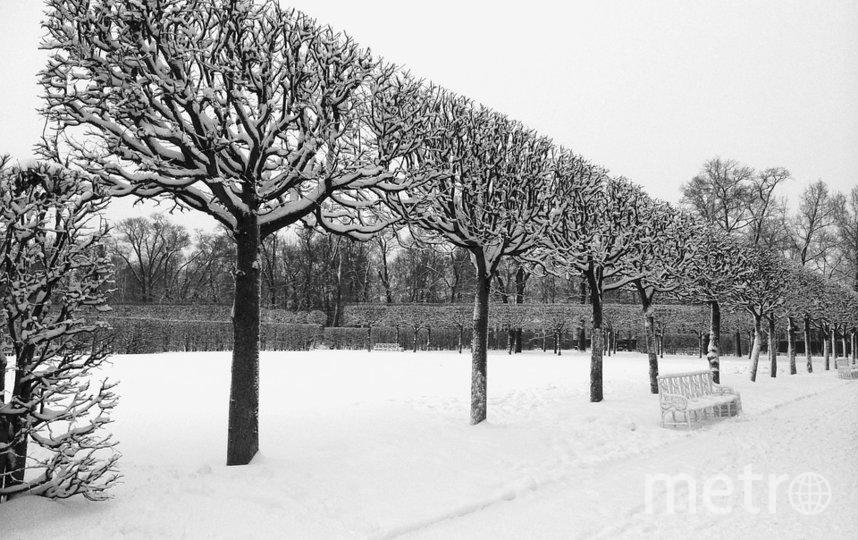Зима пришла все-таки в Петербург. Фото Getty