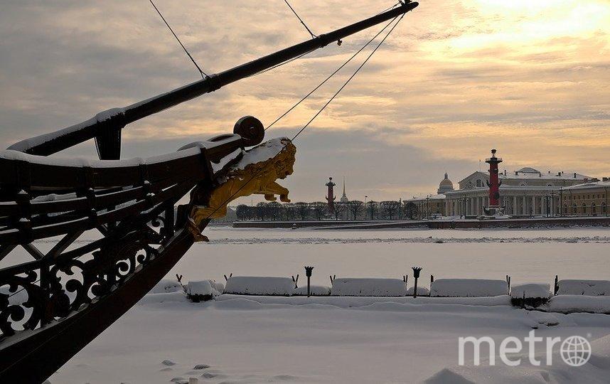 В Петербург придут буря и гололёд. Фото pixabay.com