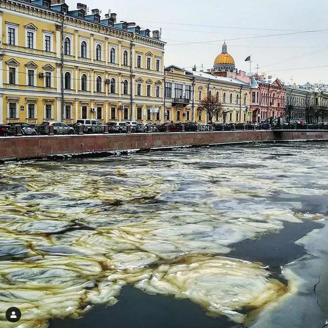 Петербуржцы поделились впечатлениями в Сети. Фото Скриншот Instagram: @dmitry.vitushkin