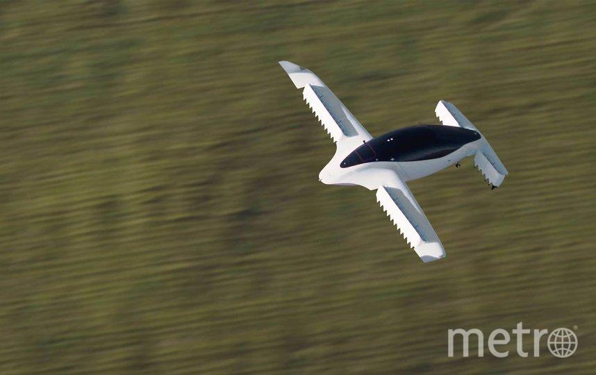 Lilium Jet. Фото istock
