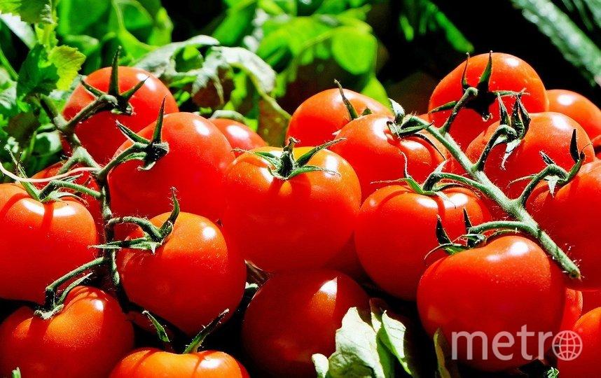 Из-за большого количества органических кислот томаты противопоказаны при гастрите и язве желудка. Фото Pixabay