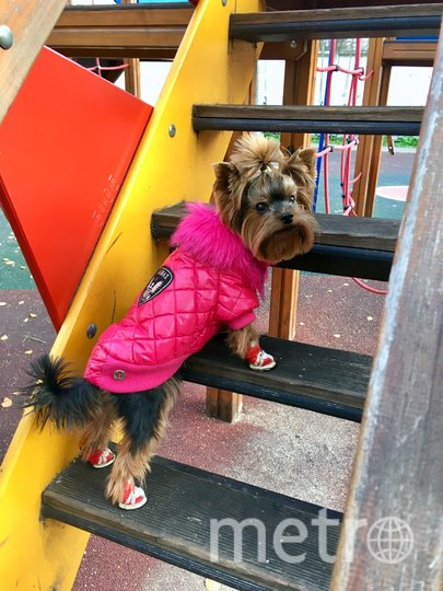 "Она вообще та ещё модница! Фото Шульга Эвелина, ""Metro"""