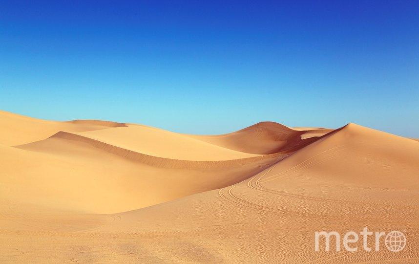 Учёные убеждены: грядут 5 самых жарких лет в истории планеты. Фото pixabay.com