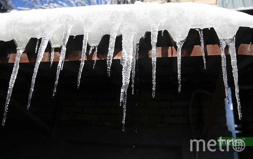 Уже в начале следующей температуры вновь поднимутся выше нулевой отметки. Фото Василий Кузьмичёнок