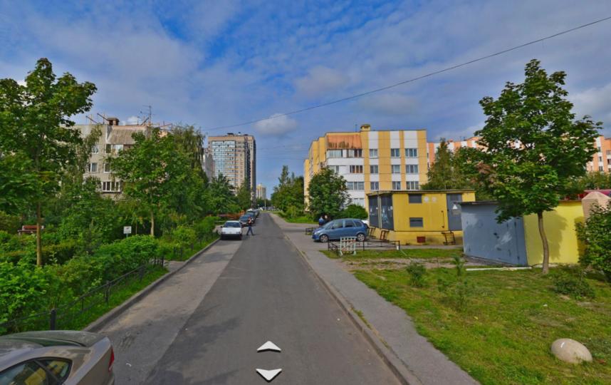 Коломяги. 3-я линия 2-й половины. Фото Яндекс.Панорамы