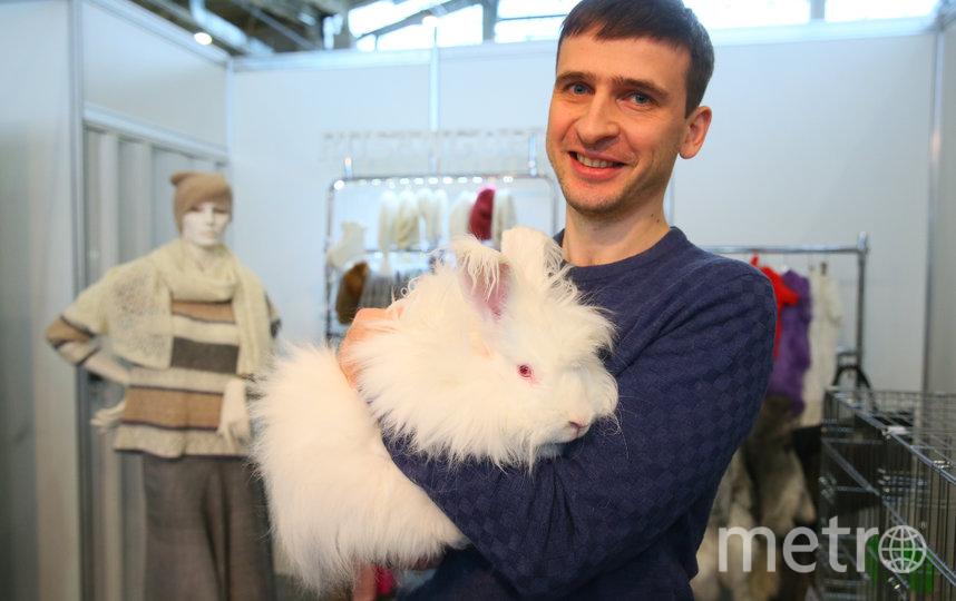 Репортёр Metro и кролик Ганс, уже частично остриженный. Фото Василий Кузьмичёнок