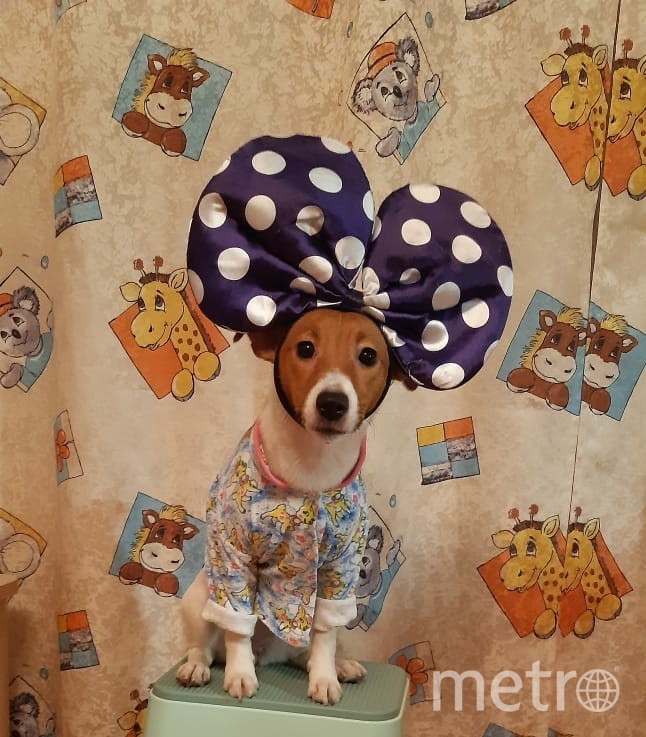 """Нэнси любит пробовать себя в разных сценических образах, здесь она - Минни Маус! Фото Екатерина Чаговец, """"Metro"""""""