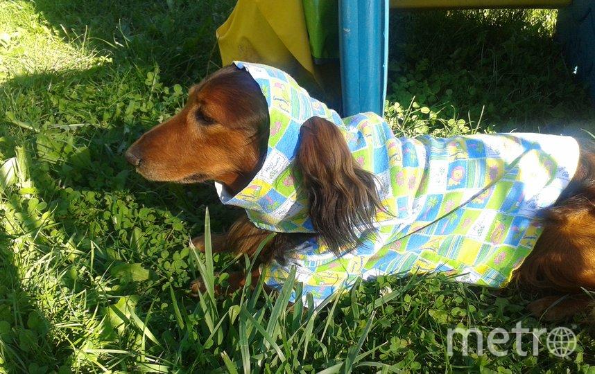 "Дети сшили Ларсену милую пижаму. Фото Ольга Захарова, ""Metro"""
