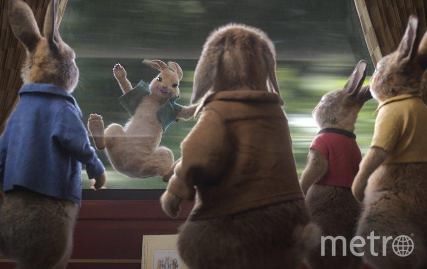 """Кадр из фильма """"Кролик Питер 2"""". Фото Sony Pictures Releasing"""