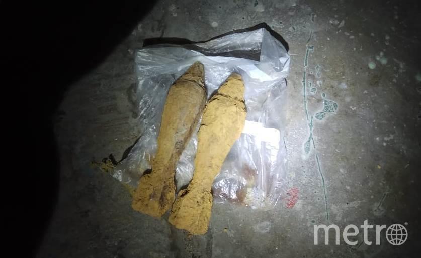 В подвале жилого дома в Кронштадте нашли боеприпасы времён войны. Фото Пресс-служба ГУ Росгвардии