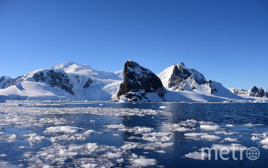 Впервые в истории Антарктиды температура воздуха поднялась выше 20 °C. Фото AFP