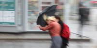 Москвичей предупредили о штормовом ветре с порывами до 20 м/с