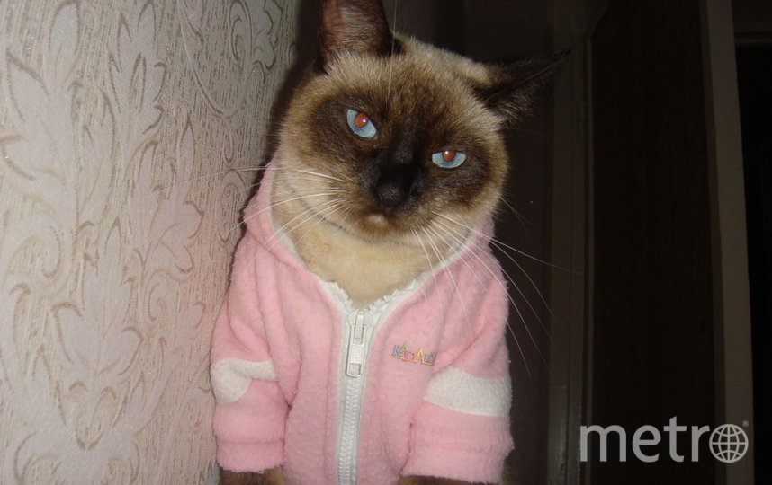"""Кто сказал, что дома можно не модничать? Фото Анна , """"Metro"""""""