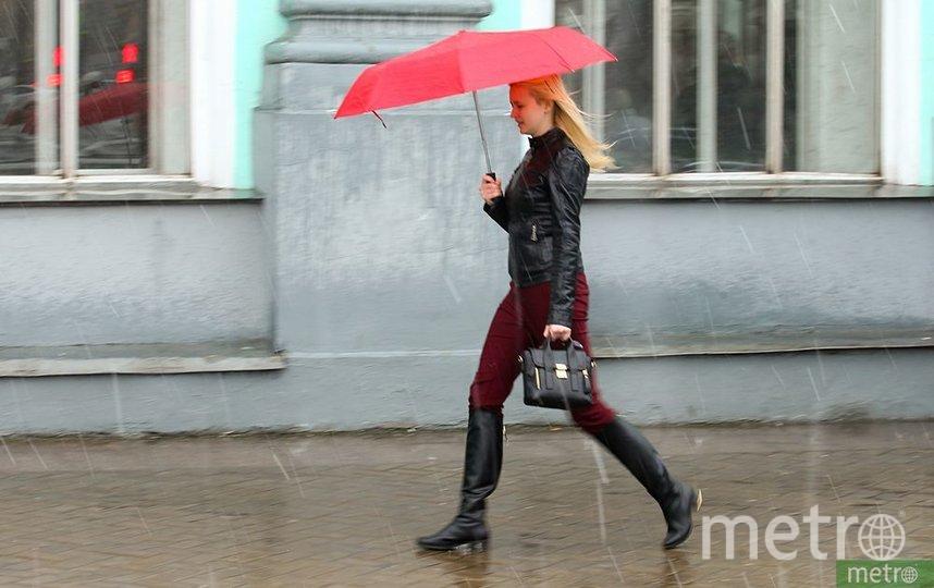 Москву ожидают новые температурные рекорды. Фото Василий Кузьмичёнок