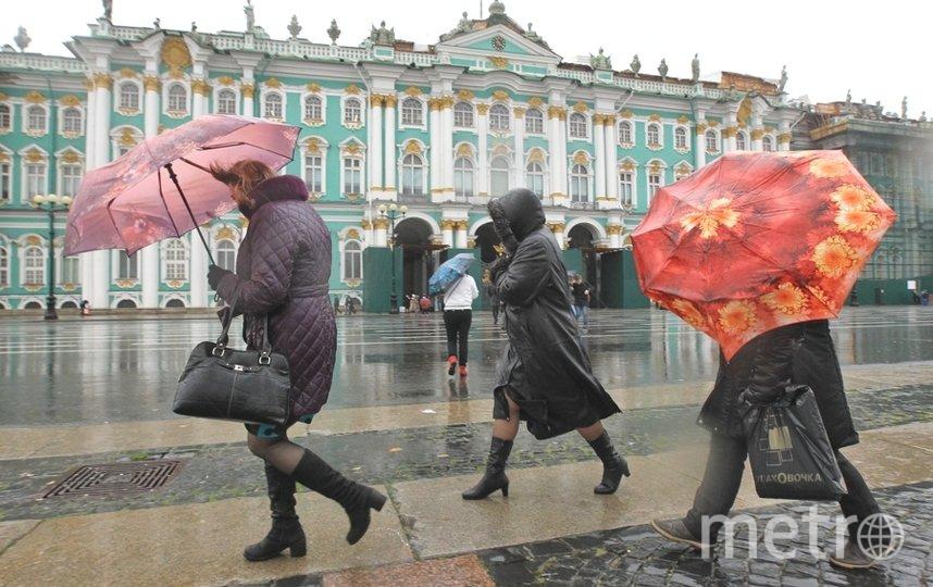 В городе пасмурно, дожди и ветер. Фото Интерпресс