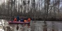 Уровень воды в реке Сестра в Ленобласти упал на 20 сантиметров