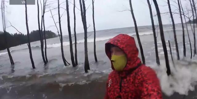 Лес затопило после шторма.