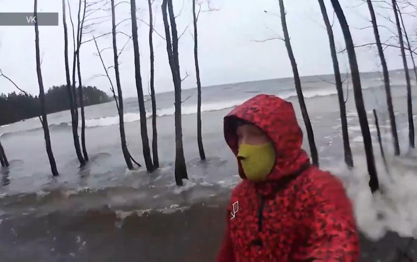 Лес затопило после шторма. Фото https://vk.com/search?c%5Bq%5D=%D0%B4%D0%B5%D0%BD%D0%B8%D1%81%20%D0%B7%D0%B8%D0%BD%D1%87%D1%83%D0%BA, vk.com