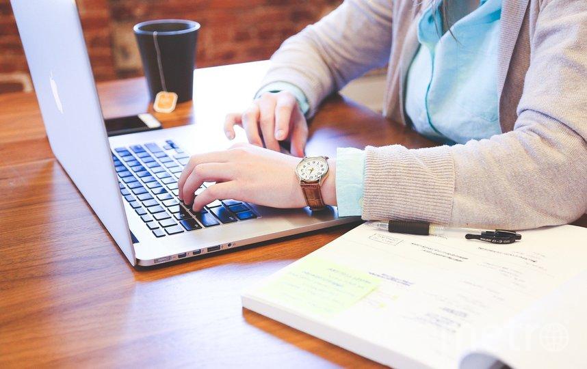Эксперты выяснили, через какую соцсеть проще всего найти работу. Фото Pixabay
